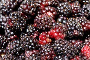 blackberrie